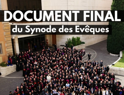 Synode des jeunes : entretien avec Giacomo Costa sj, secrétaire du synode