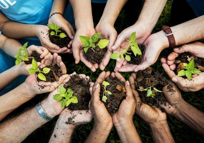 Préférences apostoliques universelles Ecologie Maison commune
