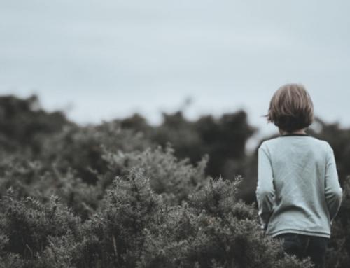 Lutte contre les abus sexuels : appel aux victimes et point d'étape