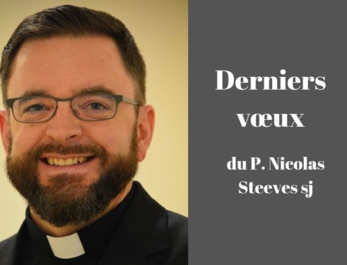 Portrait de Nicolas Steeves